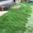 お庭の草刈り&高圧洗…