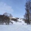 光くんスキーに挑戦!