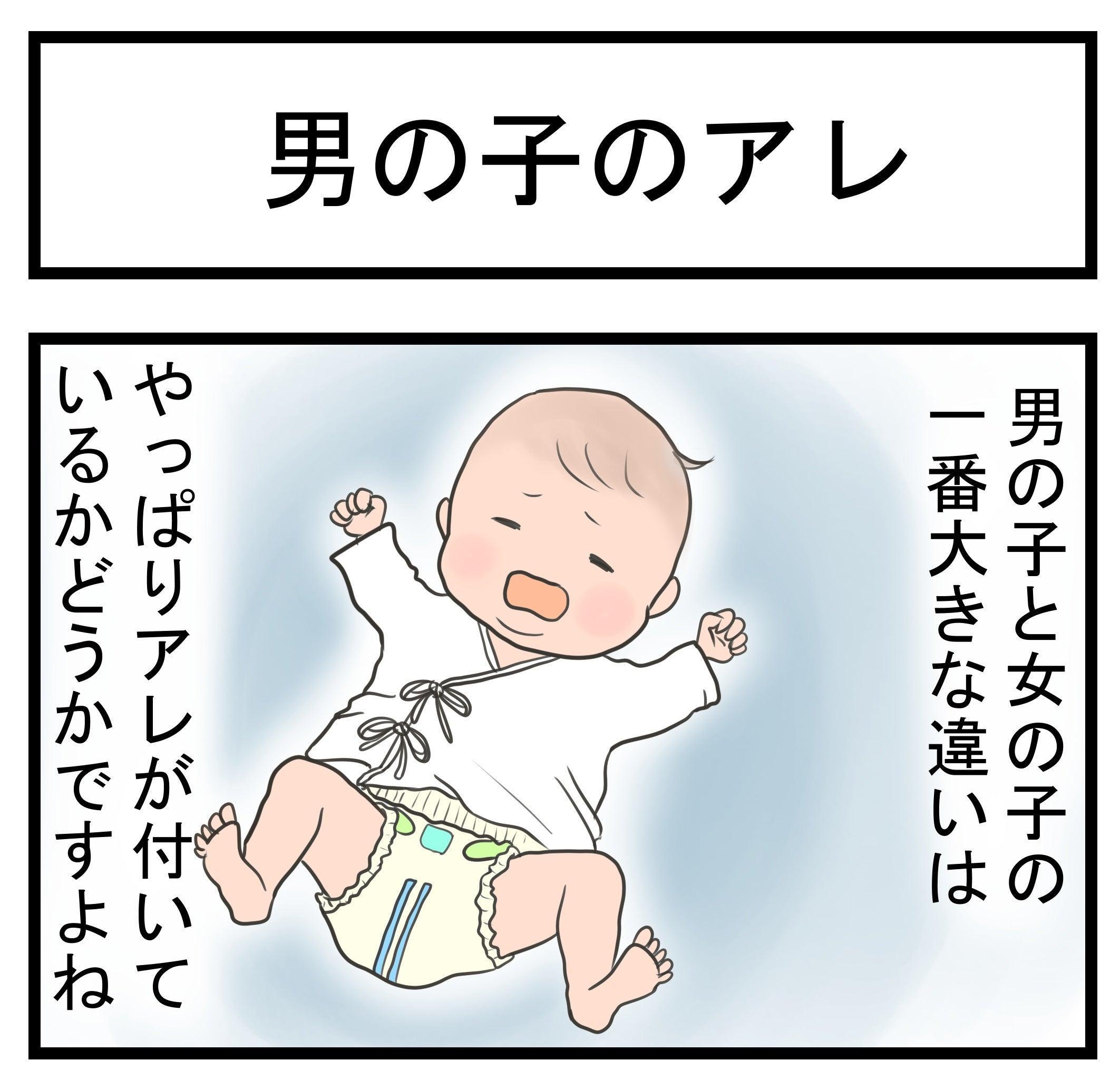 vol.311「男の子のアレ」 | ママ...