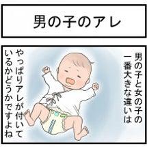 vol.311「男の…