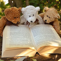 本を借りる習慣・・も…
