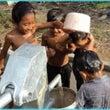 カンボジア支援(寄付…