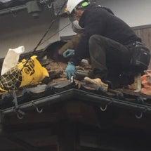 雨漏りと瓦屋根全体の…