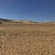 砂漠にダイブ!