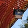 塩竈神社とお腹の虫と…