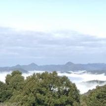 今朝は雲海♪