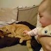 ☆愛猫と愛娘の関係☆