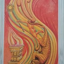 1月19日のカード