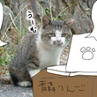 新148 話 【 忍…
