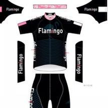 Team flami…