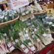 沖縄野菜をまるごと使…