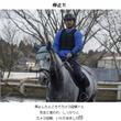 馬もカメラにカメラ目…