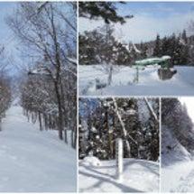 また某スキー場