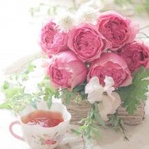 真冬でもバラが好き♪…