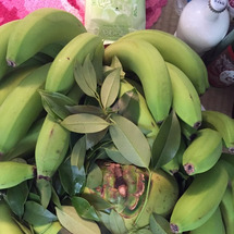 ココナッツ配送しまし…