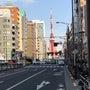 今日は暖かい東京。