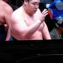 大相撲初場所 またし…