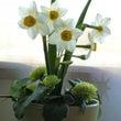 お花と木 鎮静効果 …