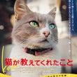 猫と暮らす街 猫が教…