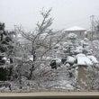 横浜市旭区 すごい雪…