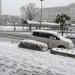 降雪の為休業