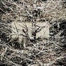 1月22日月曜日雪