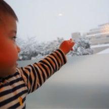 スゴイ雪ですね…