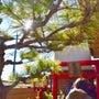 1/14 新宿・横浜…