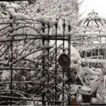 まるで豪雪地帯