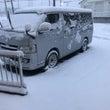 凄い雪ですね・・・。