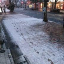江戸川区にも雪が積も…