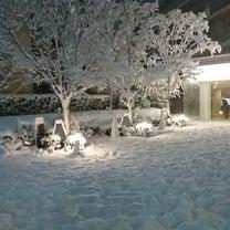 東京が雪国に~~☆ただ愛する仲の記事に添付されている画像