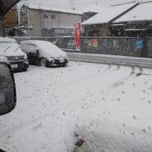 雪ですなぁ