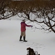 こ、こ、凍ってるっ!