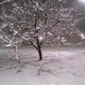 #大雪の画像