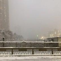 雪の日のアウター問題