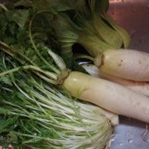 大根カレーと黒豆納豆