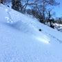 深い雪★快晴かぐらバ…