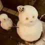 ☆雪が積もる街 東京…
