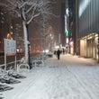東京の雪の一日