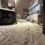 今年も雪が降ってきた…