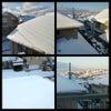 横浜市青葉区も大雪の画像
