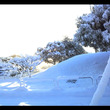 美しい雪景色と戦う朝…