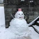 雪降りましたね〜の記事より