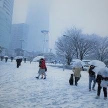 雪が降りました☆雨の…