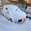 すんげー雪だよ