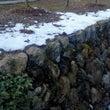 関東の雪ネタいっぱい…