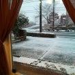 雪被害...