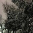 大雪。。。