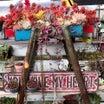 今朝のカラフル多肉寄せ植え&多肉花壇(*´艸`*)♫